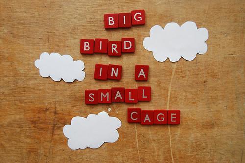 Big Bird 1